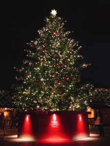 1712クリスマスツリー